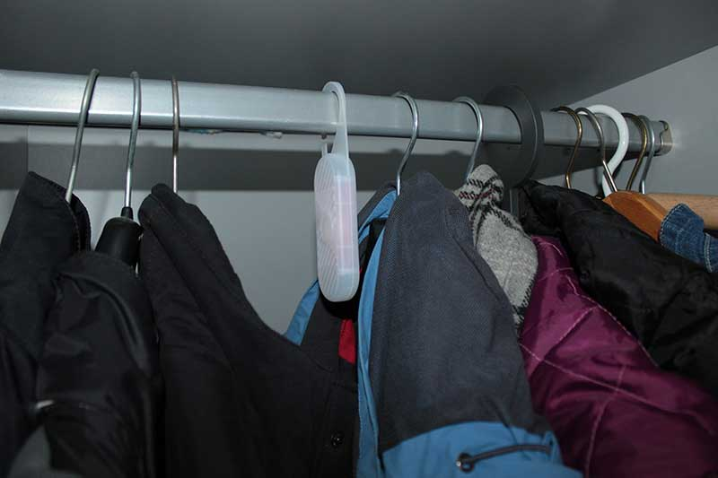 Albtraum im Schlafzimmer - Kleidermotten vorbeugen - DieCheckerin.de ...