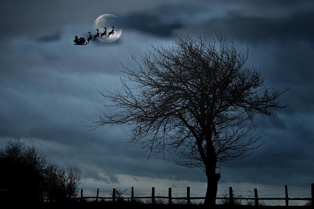 santa-with-sleigh-1032559_640