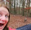 wildschwein-begegnung-wildpark-daun
