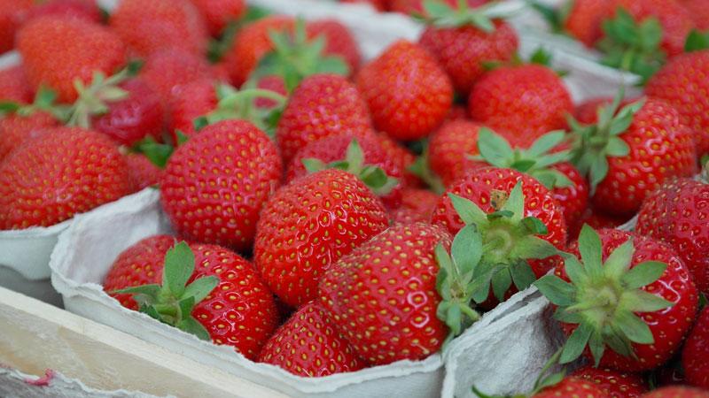 gefriergetrocknete-Erdbeeren