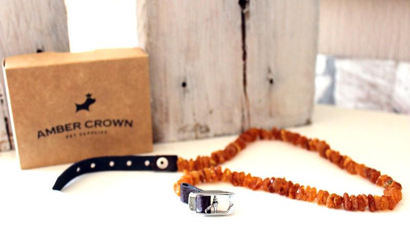Bernsteinkette-Haustier-Amber-Crown-Zeckenschutz