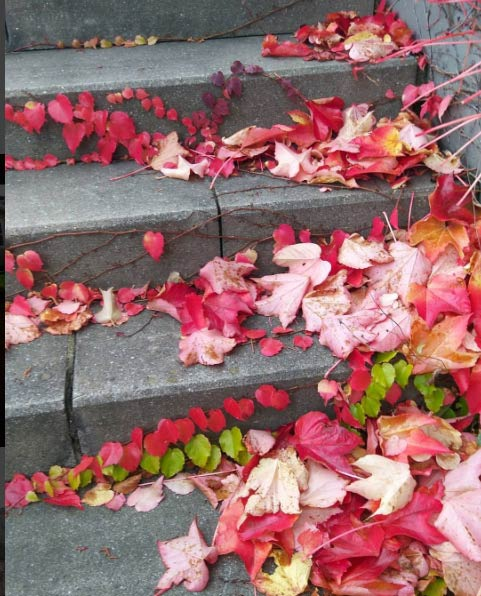 wuppertal-lifestyle-blog-herbst