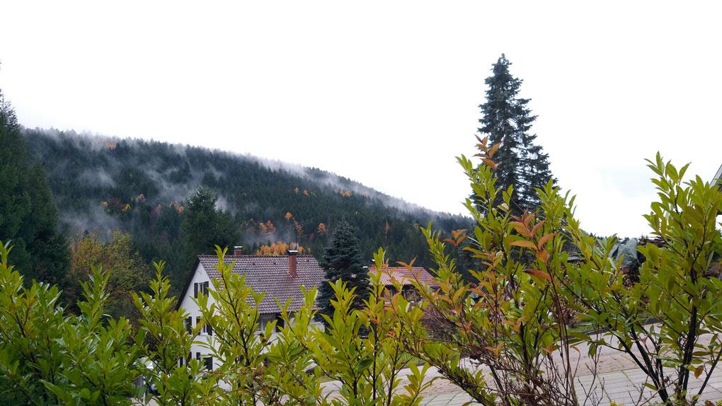 luxus-ferienhaus-schwarzwald-dieboldsberg-ausblick-2