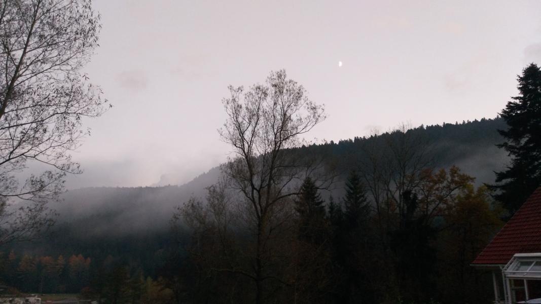 luxus-ferienhaus-schwarzwald-dieboldsberg-aussenansicht-ausblick