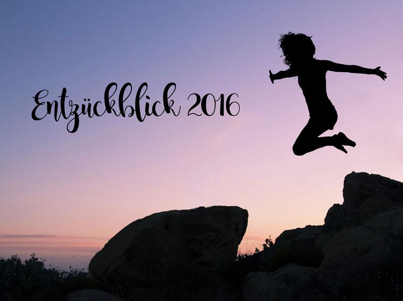 Entzückblick-2016-DieCheckerin