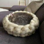 Katzen Kuschel Kram
